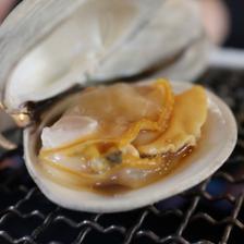 九十九里地はまぐり 2キロ 千葉県ブランド水産物認定品 2キロ入 魚介類/蛤通販