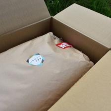 新米 瀬戸内讃岐 令和2年産コシヒカリ100% クリーン精米10キロ 紙袋入り クリーン精米10Kg 米/米通販