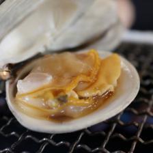 九十九里地はまぐり 1キロ 千葉県ブランド水産物認定品 1キロ入 魚介類/蛤通販