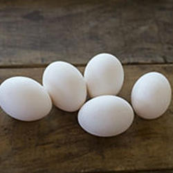 卵お取り寄せ宅配食材通販産直アウル