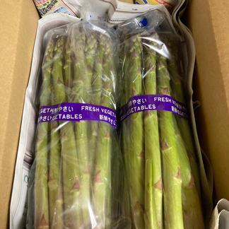 WoodBerry農園のアスパラガス 2kg 野菜/アスパラガス通販