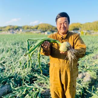 【数量限定】訳あり完熟淡路島たまねぎ(5kg) 5kg 野菜/玉ねぎ通販