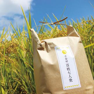 ゆめしなの5kg〈令和2年産〉長野県の標高の高い地域で栽培されているお米 5kg 米/米通販