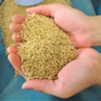 濃厚有機玄米甘酒(あまざけ)250g×4本【メール便・送料込み】 250g×4 飲料/その他飲料通販