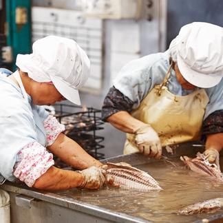 【魚の街のおやつ】焼津かつおせんべい150g 3袋セット 150g×3袋 加工品/その他加工品通販
