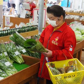 おまかせ 内子産旬の野菜セット(クール便) 野菜/セット・詰め合わせ通販
