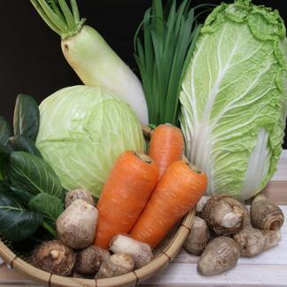 栃木県産 道の駅もてぎの旬の野菜セット 8~10品目 野菜/セット・詰め合わせ通販