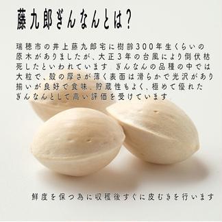 藤九郎ぎんなん 0.5kg 野菜/その他野菜通販