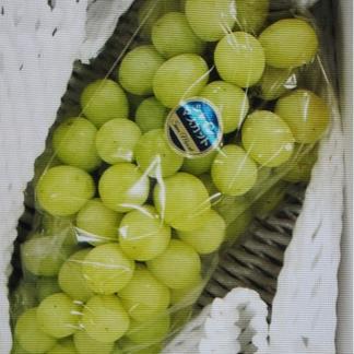 樹上完熟シャインマスカット (画像1房980g) 1箱 600g入 1房~2房入り 画像1房980g 果物/ぶどう通販
