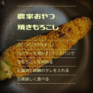朝採り朝便発送『おおもの』🌽✨7/10まで😢 5kg(10-12本) 野菜/とうもろこし通販