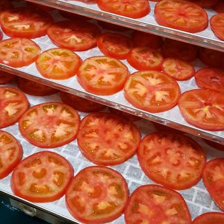 お試し!ウエタトマトdeドライトマト 30g 加工品/その他加工品通販