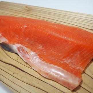 [訳あり]刺身用フィレー(ますのサイズ規格外)6㎏(18枚) 6kg(18枚) 魚介類/鮭通販