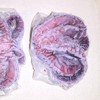 【瀬戸内海産でやわらかい】ゆでタコ 約600g(数十グラム単位で前後する場合があります) 魚介類/タコ通販