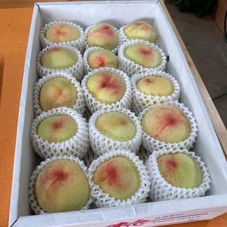 岡山白桃工房(桃茂実苑)の岡山白桃 3.5kg 果物/もも通販