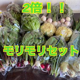 【冷蔵タイプ用】のぐちファーム安曇野☆ファミリーWaiWai野菜ボックス 野菜/セット・詰め合わせ通販