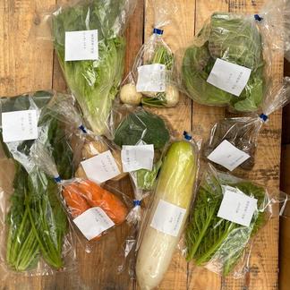 お野菜box Mサイズ 9品〜10品 野菜/セット・詰め合わせ通販