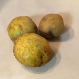 お試し/北海道産越冬(全て無農薬)野菜詰め合わせ 6kg程度 野菜/その他野菜通販