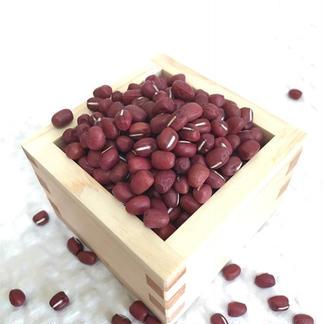京都丹波の丹波大納言小豆 250g×2 野菜/豆類通販