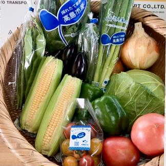 湖国からの旬便り〜おまかせ野菜7種類前後〜 100サイズ朝採り野菜7種類前後 野菜/セット・詰め合わせ通販