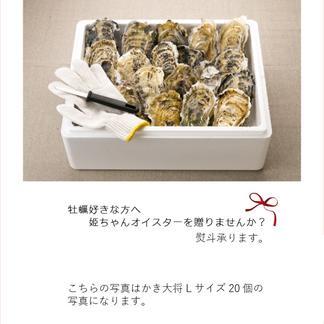 (お届け地域:北陸・東海・関西のみ)【数量限定】宮城産『かき大将』デラックス5個 超特大!XLサイズ(1個350g~500g) 女川ブランド殻付き牡蠣【生食用】 殻付き牡蠣XL5個 魚介類/牡蠣通販