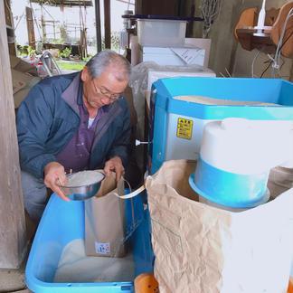 無肥料・無農薬・塩米の森のくまさん 5キロ 米/米通販