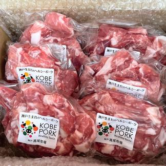 神戸ポーク 切り落とし 1.8kg 1.8kg(300g×6) 肉/豚肉通販