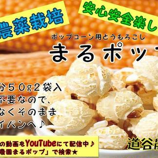 ポップコーントウモロコシまるポップ 50g×6袋 野菜/とうもろこし通販