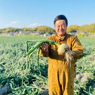 【吊るして長期保存】つる付き淡路島たまねぎ(10キロ) 10kg 野菜/玉ねぎ通販