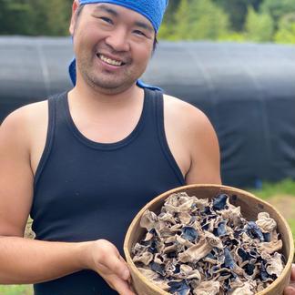 コリッコリの安心安全の国産乾燥キクラゲ(150g) 150g 野菜/きのこ通販