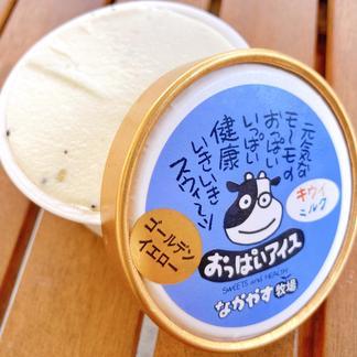 (2箱セット)3種類の美味しいシャーベット 乳製品/その他乳製品通販
