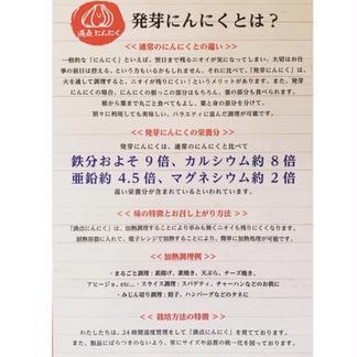 満点にんにく(発芽にんにく) 60g〜70g×3袋+40g〜60g 1袋 野菜/にんにく通販