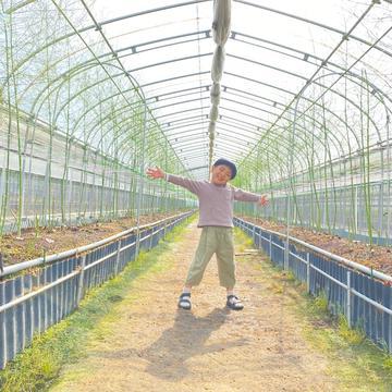 瀬戸内もり農園 多度津町 野菜/とうもろこし通販