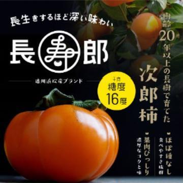 マルモリファーム 浜松市 野菜/とうもろこし通販