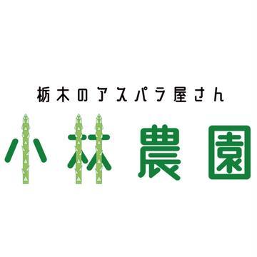 小林農園 大田原市 野菜/アスパラガス通販