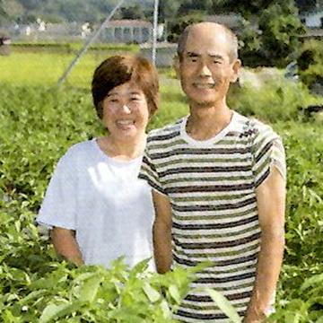 たいら農園 八女市 野菜/山菜通販