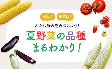 夏野菜の品種の違いを知ってあなた好みを見つけよう。