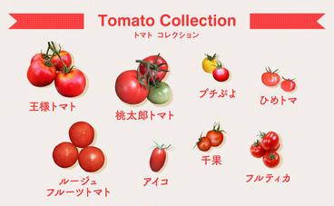 産直アウルに出品されているトマトの品種一覧