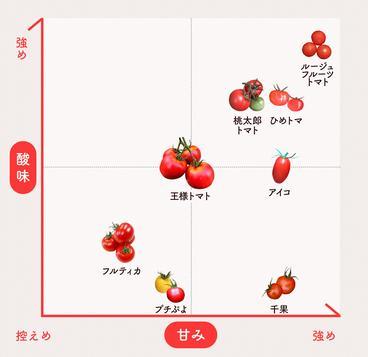 定番の桃太郎トマトや王様トマトから珍しいぷちプヨ、ひめトマまで。甘さやジューシーさ、食感は品種様々。