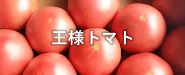 王様トマト.png