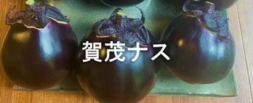賀茂ナス.png