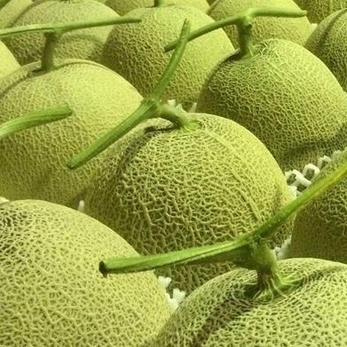 国産みやこ南瓜と三浦メロン かぼちゃ1玉 果物や野菜などのお取り寄せ宅配食材通販産地直送アウル