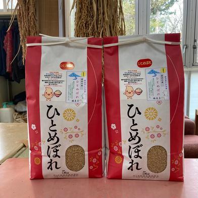 『みんなで頑張ろう米❗️』ひとめぼれ玄米10kg 10kg 果物や野菜などのお取り寄せ宅配食材通販産地直送アウル