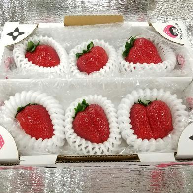 希少な大きな『プレミアムモカベリー』 苺 イチゴ ※時間指定は可能です。 一箱 苺のみ約350g【6粒】化粧箱入り はなだふぁーむ