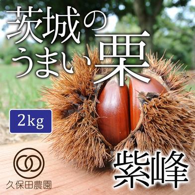 茨城のうまい栗(紫峰)約2kg(約70個) 2kg(約70個) 久保田農園