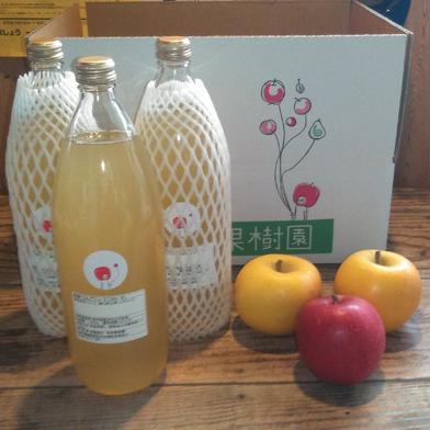 100%りんごジュース【🍎おまけりんご付き🍏】 りんごジュース(ストレート)【1000ml×3】 りんご3個 果物や野菜などのお取り寄せ宅配食材通販産地直送アウル