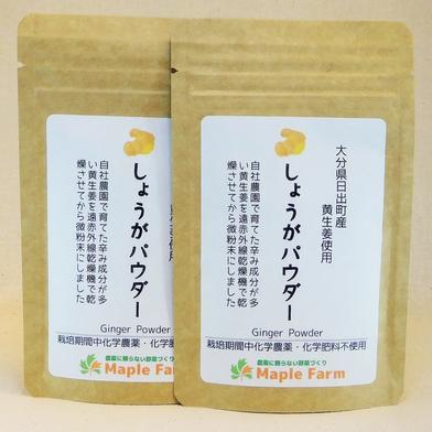 【送料無料】ピリッと辛い☆しょうがパウダー20g×2袋(栽培期間中農薬・化学肥料不使用の黄生姜を使用) 20g×2袋 メープルマート