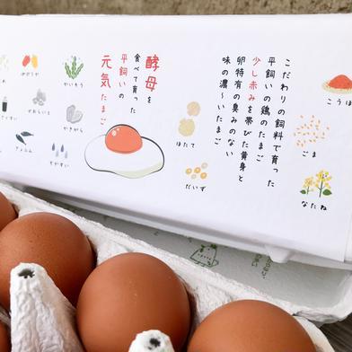 【酵母・平飼い卵30個】酵母を与えて育った平飼いたまご(元気たまご)30個 30個(10個入り紙パックで3つ) 果物や野菜などのお取り寄せ宅配食材通販産地直送アウル
