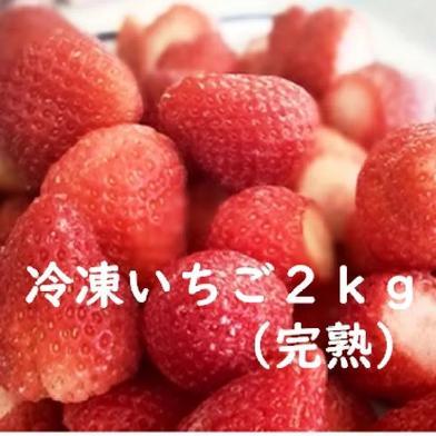 【送料無料】濃厚いちごで作った冷凍いちご2㎏ 2㎏(1㎏×2袋) 果物や野菜などのお取り寄せ宅配食材通販産地直送アウル