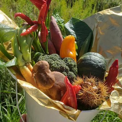 【母の日】京野菜のブーケ♥️プレゼントに! 100サイズ キーワード: 母の日 通販