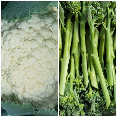 スティックブロッコリー スティックカリフラワー 約1.3キロ~1.5キロ 果物や野菜などのお取り寄せ宅配食材通販産地直送アウル